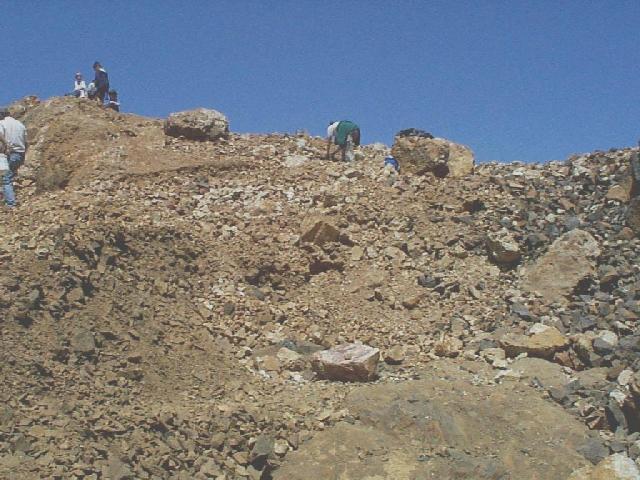 Walker Valley Geode Site Information Washington State